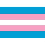 Transvlag